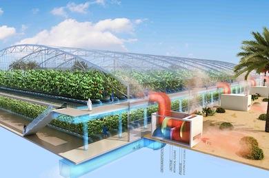 GreenhouseCutOut1